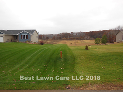 Your lawn can be darker green.