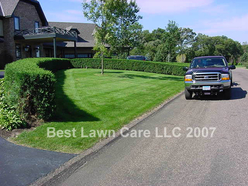 Great curb appeal with great fertilizer!